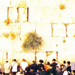 Stomping Grounds sermon art